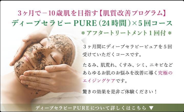 3ケ月で-10歳肌を目指す【肌質改善プログラム】ディープセラピーPURE(24時間)×5日コース