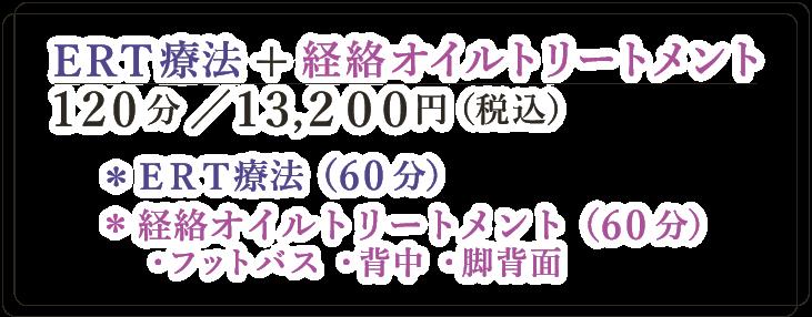 ERT療法+経絡オイルトリートメント|120分/13.200円(税込)